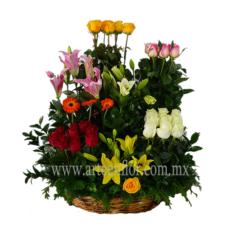 36-Rosas-en-colores-y-flores-surtida