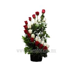 24-Rosas-rojas-y-blancas-en-escalera